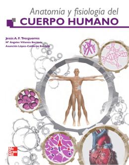 Teórico de Anatomía y fisiología del cuerpo humano