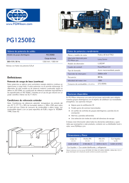 PG1250B2 - FG WILSON Gas and Diesel Generator Sets