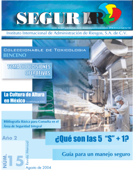 revista SEGURIIAR