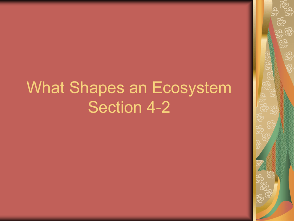 worksheet Section 4 2 What Shapes An Ecosystem Worksheet Answers what shapes an ecosystem section 4 2