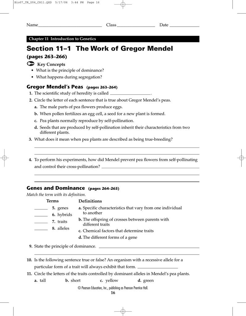 Biology 111 The Work Of Gregor Mendel Worksheet Answers ...