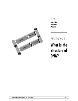 Chp. 1, Section C: DNA Structure and Replication