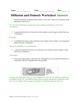 Worksheets Diffusion And Osmosis Worksheet Answers diffusion and osmosis worksheet answers bhbr info printables gozoneguide thousands of printable