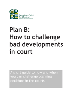 Judicial review and planning decisions