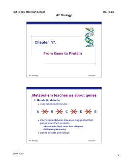 Chapter 17. From Gene to Protein Metabolism teaches us about genes