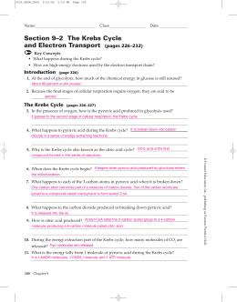 Section 9–2 The Krebs Cycle and Electron Transport (pages 226–232)
