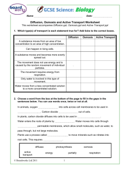 Diffusion, Osmosis and Active Transport Worksheet