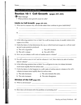 Printables Cell Growth And Division Worksheet chapter 10 cell growth and division se section pages