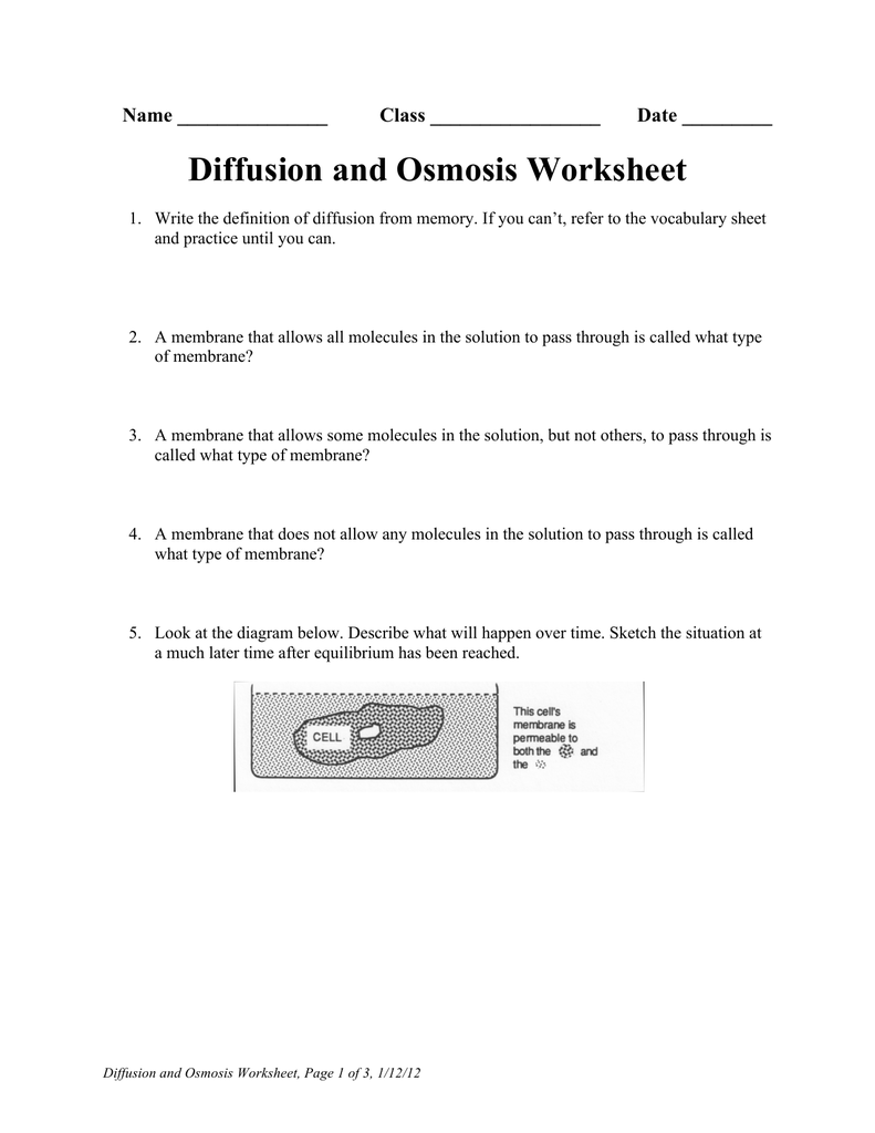 All Grade Worksheets Diffusion And Osmosis Worksheet All Grade – Osmosis Diffusion Worksheet