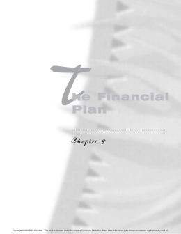 Chapter 8: The Financial Plan