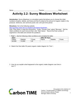Activity 2.2: Sunny Meadows Worksheet