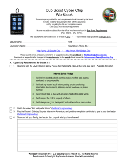 Cub Scout Cyber Chip Workbook
