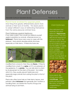 Plant Defenses
