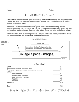 Bill of Rights Collage Collage Space (images)