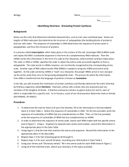 Worksheets Transcription And Translation Activity Worksheet 9th 12th Grade Lesson Pla