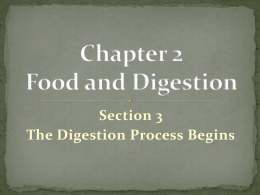 Chapter 2 Food and Digestion