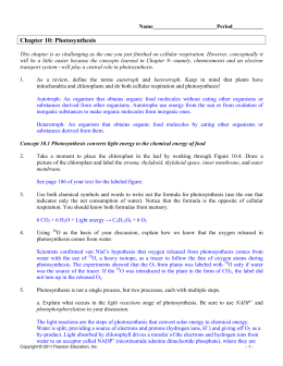 Ch. 8 Answer Key