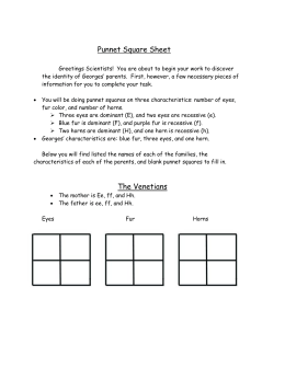 Punnet Square Sheet