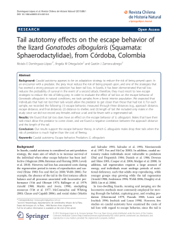 Tail autotomy effects on the escape behavior of the lizard Gonatodes