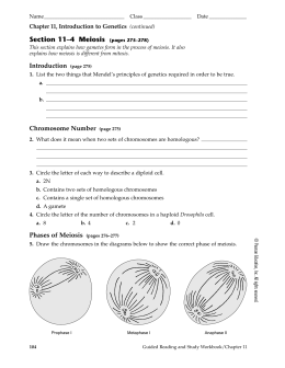 Meiosis Worksheet Answers together with Meiosis 11 4 Answers  Awesome Search Form With Meiosis 11 4 Answers together with Pin by lisa on activites   Teaching cells  Science clroom in addition Section 11–4 Meiosis  pages 275–278 in addition Meiosis Matching Worksheet besides meiosis worksheet answer key Form – Fillable Pdf Template also Frederick  Pam   Biology I further Chapter 11 4 Yet Another Study Guide Key as well Section 11 4 Meiosis Worksheet Answers   Winonarasheed additionally section 11 4 meiosis worksheet answers   relationworksheet besides 11 4 meiosis   11 4 Meiosis Name 1 Genes are located on in the cell as well Meiosis Worksheet Answers Inspirational Of Phases Mitosis Worksheet additionally Section 11 4 Meiosis Answer Key by lipbivoni   issuu as well 8  Lab 4 Answer Key  all labs    Alldays 3 9marks R K Sakai K additionally Prentice hall chemistry workbook answer key chapter 11 furthermore cell cycle and mitosis coloring answer key – littapes. on 11 4 meiosis worksheet answers