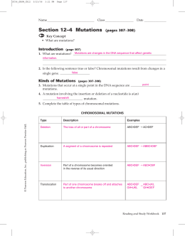 Section 12–4 Mutations (pages 307–308)