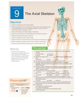 Human anatomy practical