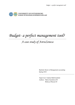 Budget- a perfect management tool?