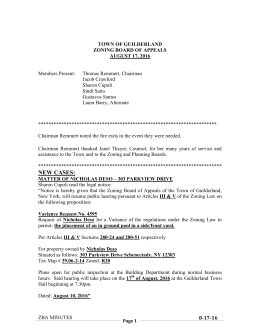 Zoning Board of Appeals Minutes