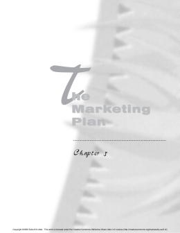 Chapter 5: The Marketing Plan