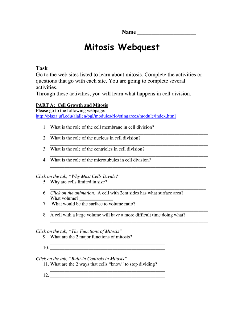 Mitosis webquest airport high school pooptronica