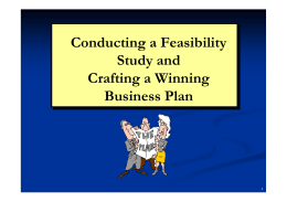 Conducting a Feasibility Study and Crafting a Winning Business