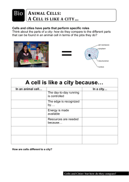 A cell is like a city because…