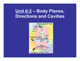 Unit 6:2 – Body Planes, Directions and Cavities