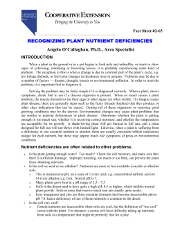 Recognizing Plant Nutrient Deficiencies