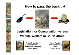 How to pass the buck - Born Free Foundation