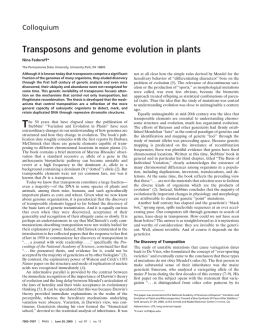 Transposons and genome evolution in plants