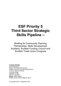 Third Sector Strategic Skills Pipeline – Local Authority Area