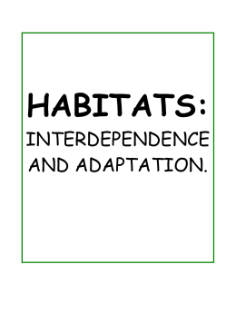 INTERDEPENDENCE AND ADAPTATION.