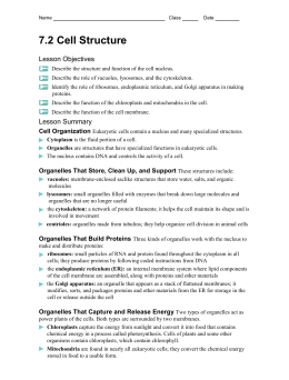 7 2 cell structure worksheet answers key