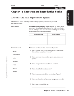 Chapter 16 Endocrine and Reproductive Health