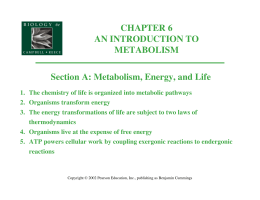 Metabolism, Energy, and Life