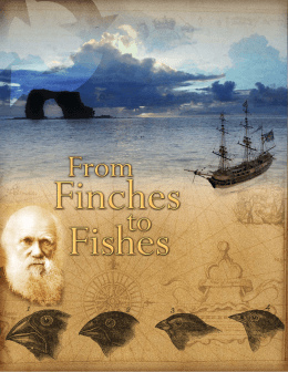 Finches to Fishes notebook.indd