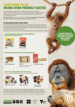 Your guide to an orang