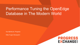 Performance Tuning the OpenEdge Database in The