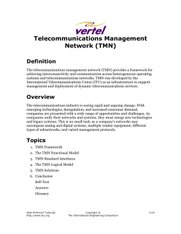 Telecommunications Management Network (TMN)