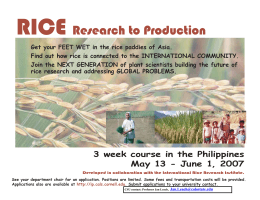 Information - rice-flyer-11