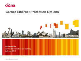 Carrier Ethernet Protection Options