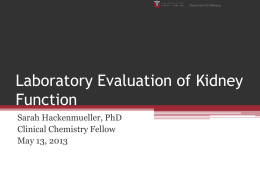 Laboratory Evaluation of Kidney Function