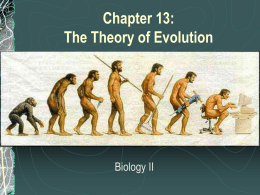 Chapter 13: The Theory of Evolution