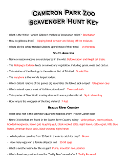 Scavenger Hunt-key